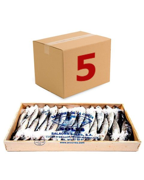 caixa5-ref-44